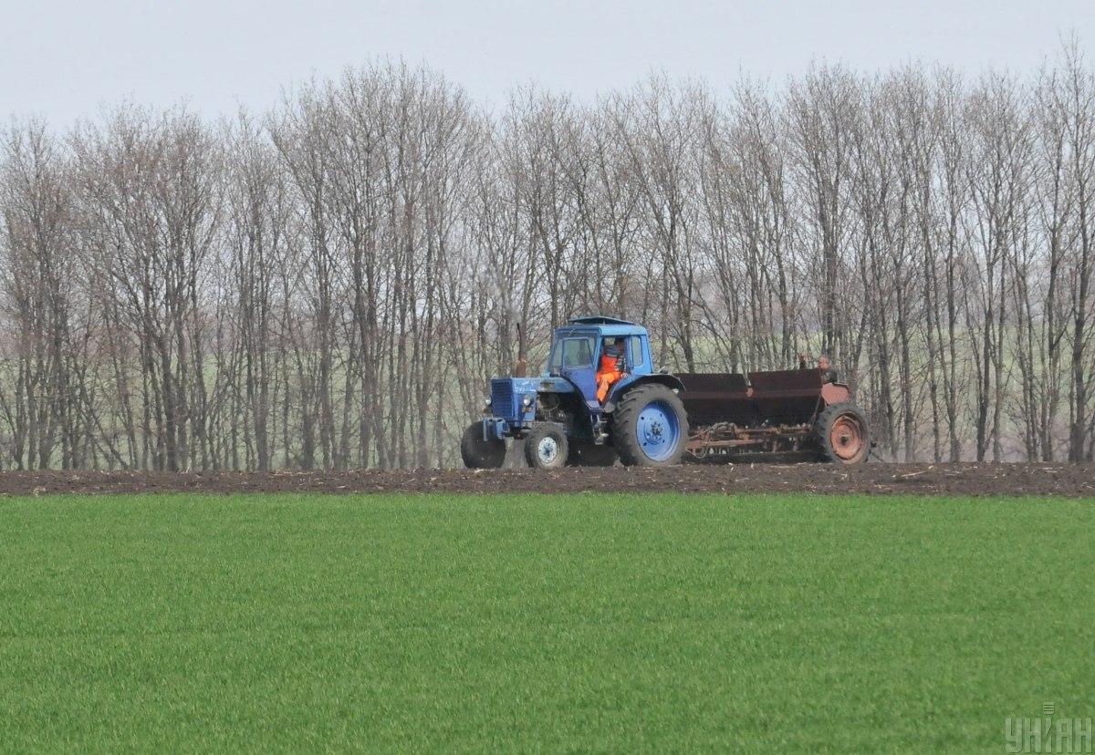 В Україні відкриють ринок землі / фото УНІАН