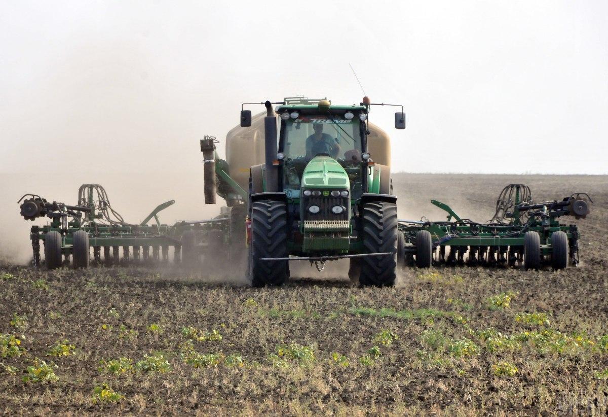 Озима пшениця посіяна на площі 3,7 млн га / фото УНІАН