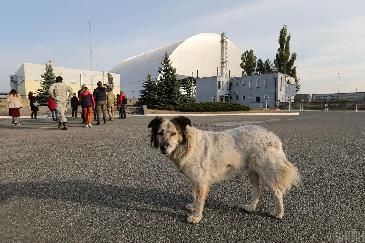 6 мая в 1986 году, спустя 10 дней после аварии на Чернобыльской АЭС, СССР официально объявил ослучившимся/ фото УНИАН