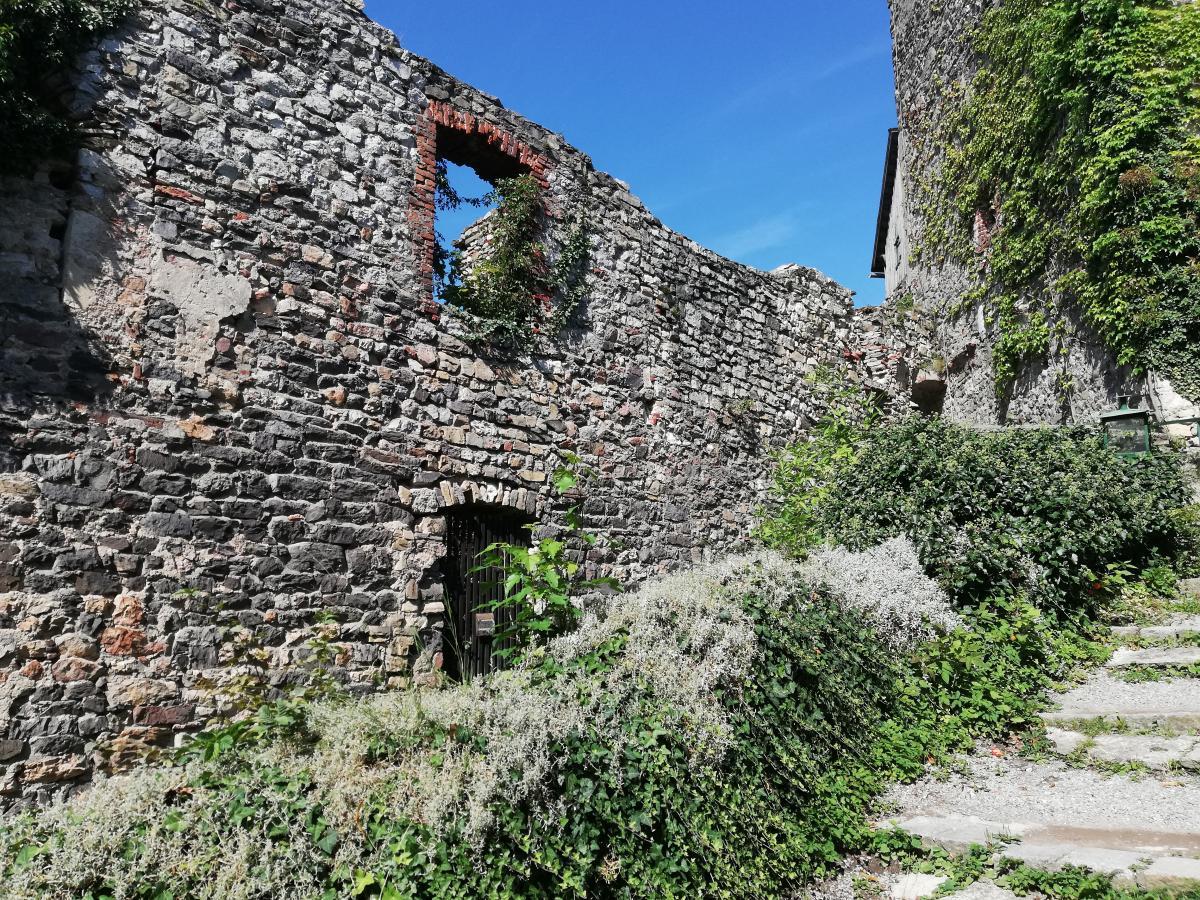 Руины замка Гёстинг / Фото Марина Григоренко