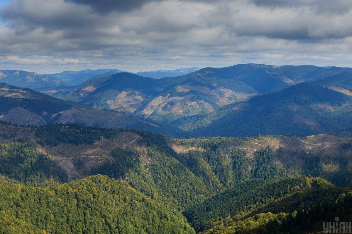 Горы Карпаты - один из лучших вариантов для отдыха в Украине / Фото УНИАН