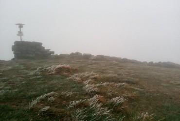В Україні випав перший сніг (фото)