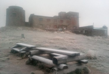 В сети показали фото снегопада в Карпатах