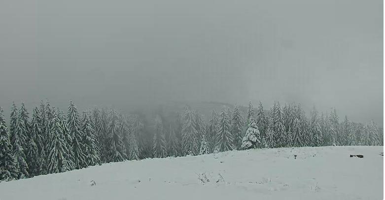 Карпати засипало снігом / snig.info