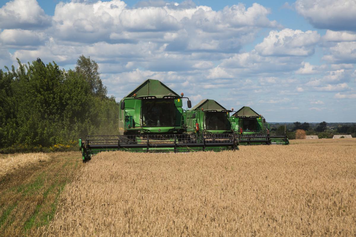 Группа компаний «Укрлендфарминг» закончила посев озимой пшеницы / фото Укрлендфарминг