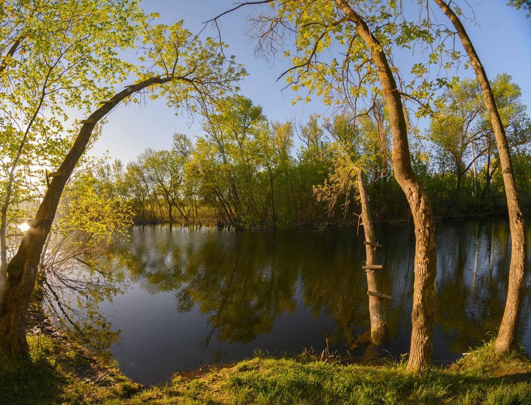 Дніпровські плавні біля Нової Каховки / Фото Володимир Демчишин
