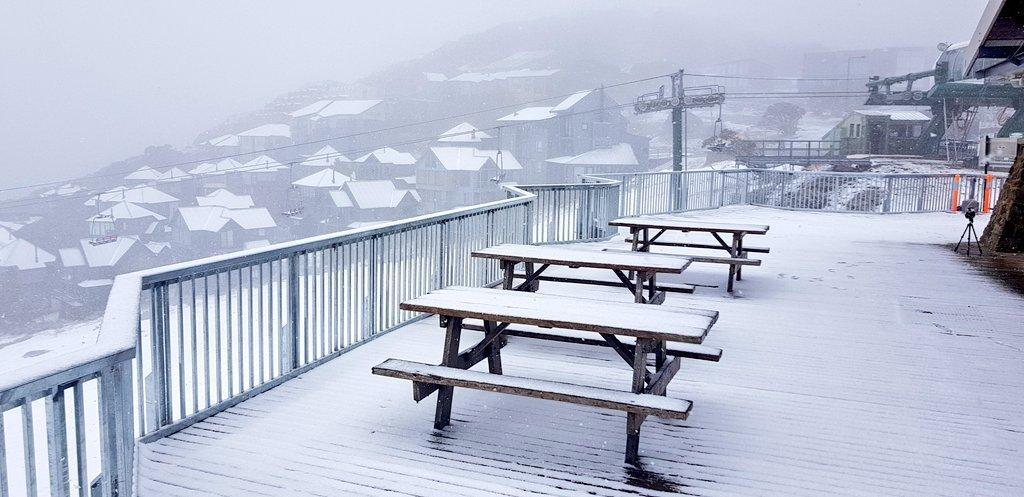 В горах Австралії йде сніг / twitter.com/_hotham
