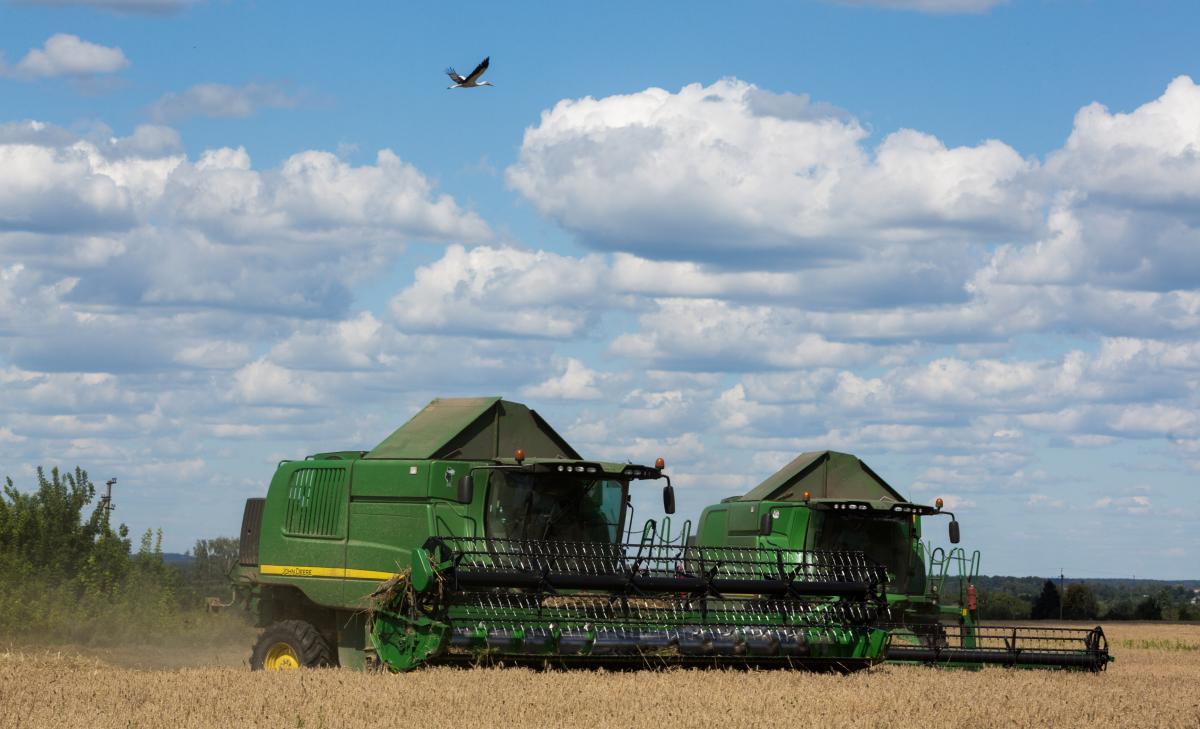 До 2001 року в Україні вже налічувалося понад 43 тисячі фермерських господарств