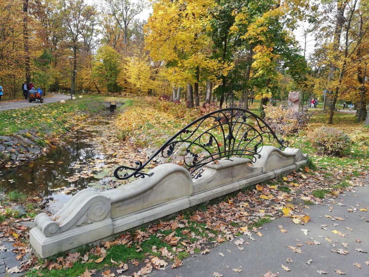 Городской парк Бучи осенью / Фото Марина Григоренко