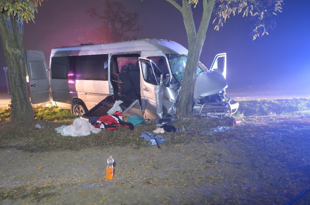 Автобус съехал на обочину и столкнулся с деревом / фото: mukachevo.net