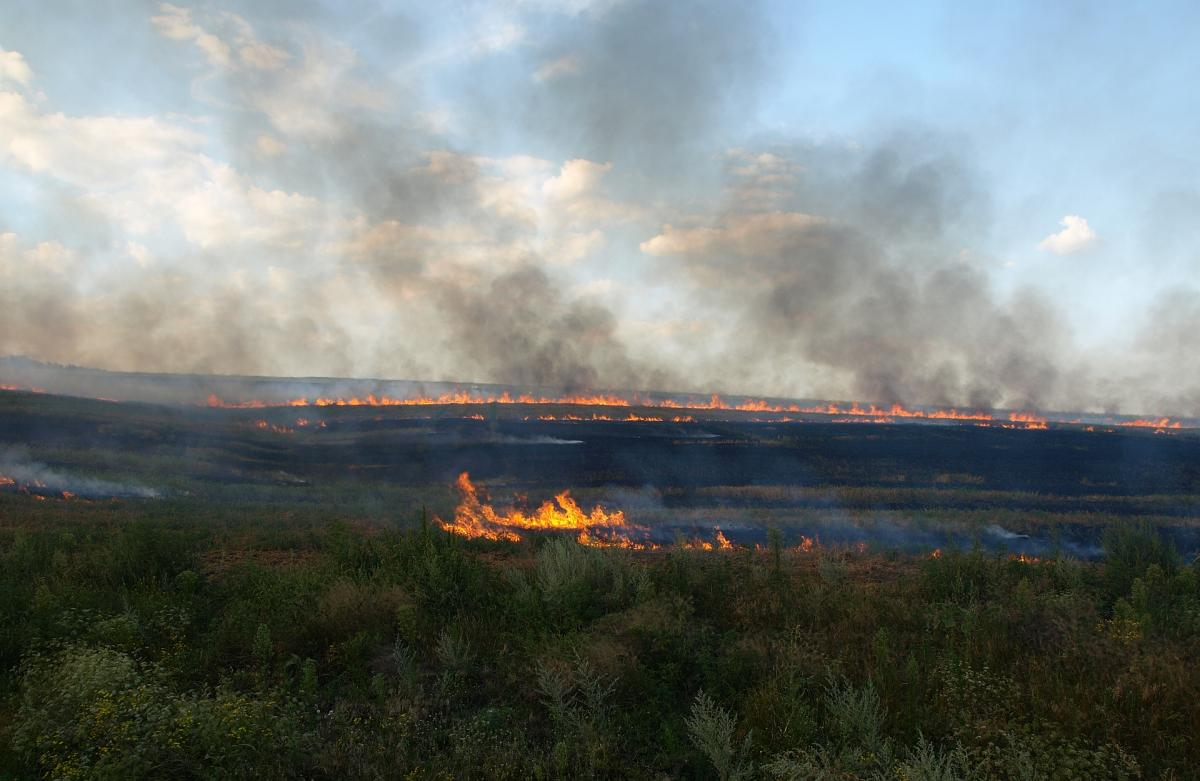 На думку фахівців, причиною забруднення повітря може бути масове спалювання стерні та листя / ecorada.dp.ua
