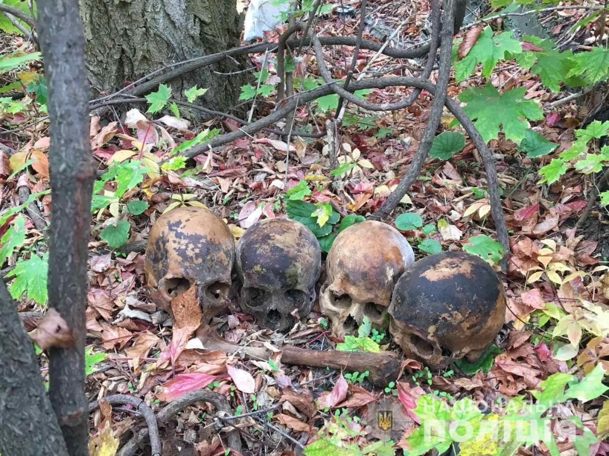 Один из черепов злоумышленник подбросил бывший девушке / фото: ГУ НП в Николаевской области