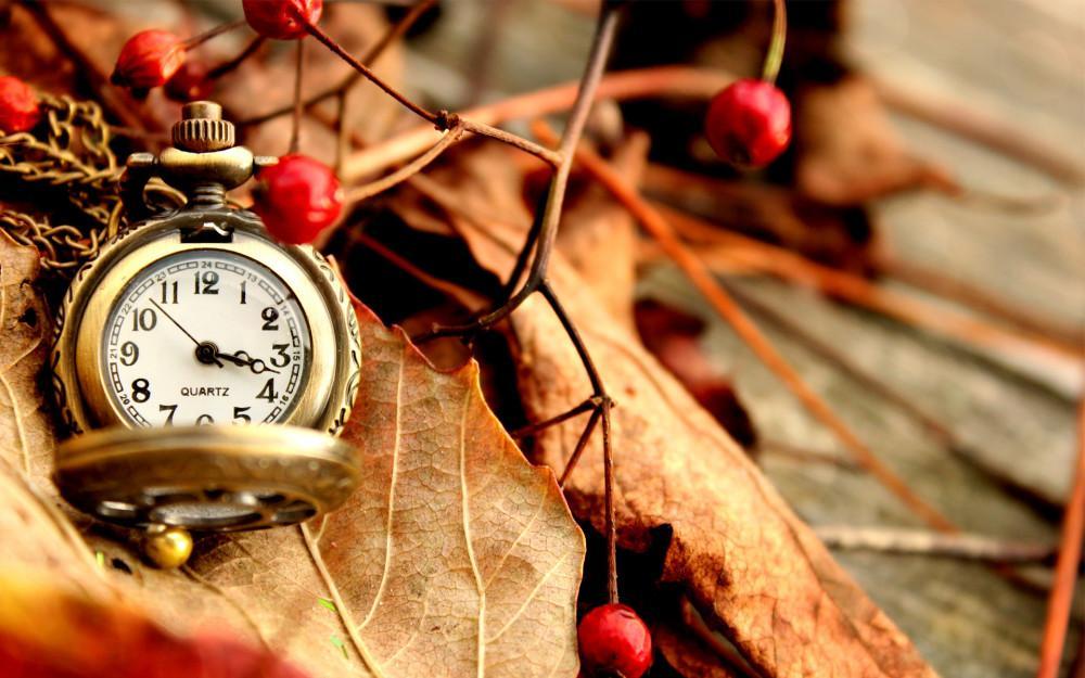 Перехід на зимовий час 2021: чи потрібно переводити годинник в 2021 році. Фото: vidia.ua