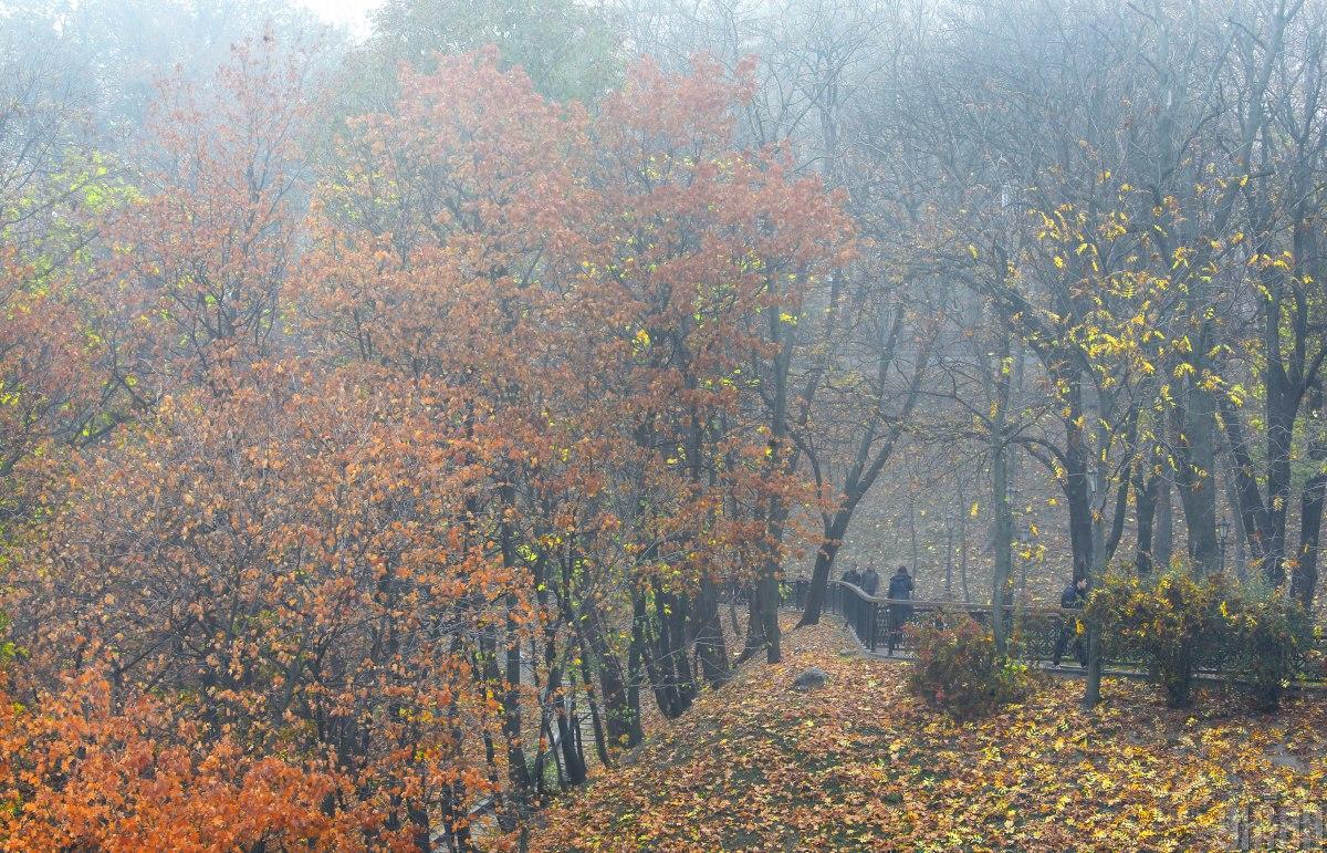 В більшості областей України завтра - туман / фото УНІАН