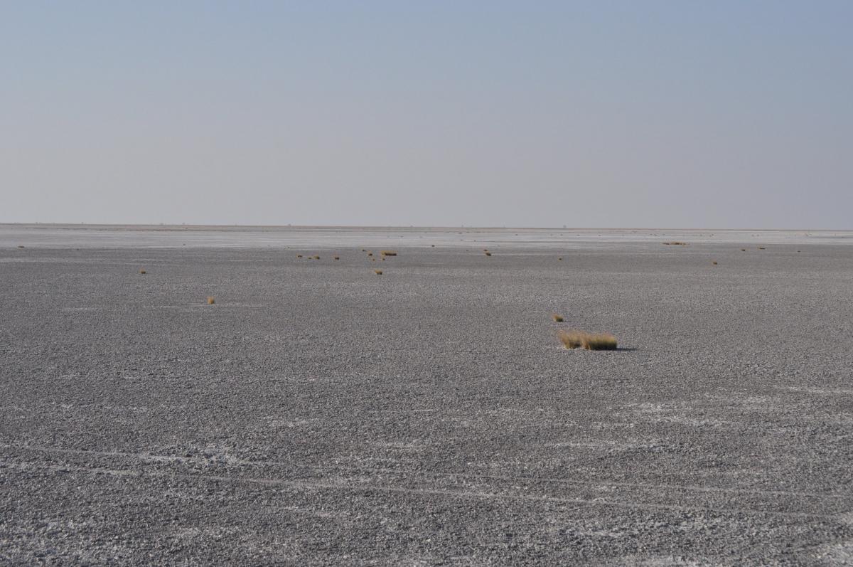 На месте соляной долины в Ботсване когда-то было озеро и здесь жили предки людей / Flickr/abi.bhattachan