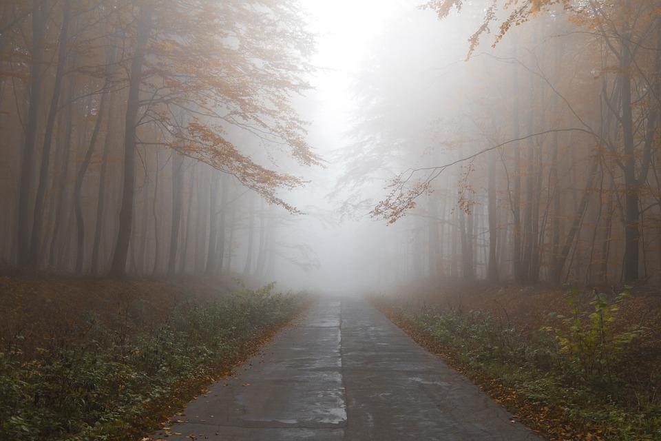 Появился прогноз погоды на ноябрь / фото pixabay.com