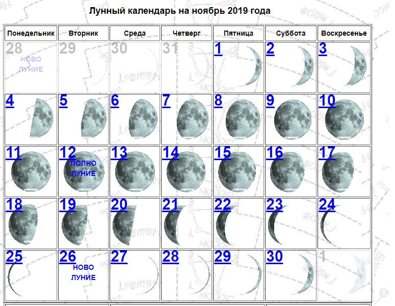 Согласно лунному календарю, полнолуние в ноябре произойдет 12 числа / lunnyy.ru
