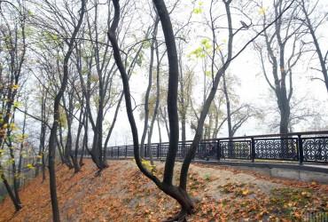 Прогноз погоды на завтра: в Украине будет пасмурно и без осадков (видеопрогноз)