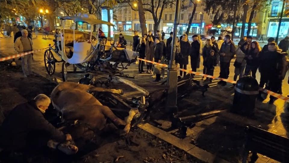 Коні вибігли на тротуар на проспекті Свободи та знесли лавку / фото Igor Zinkevych