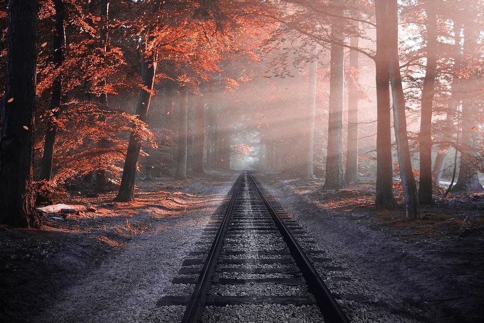 Каким знакам не повезет осенью / фото pixabay.com