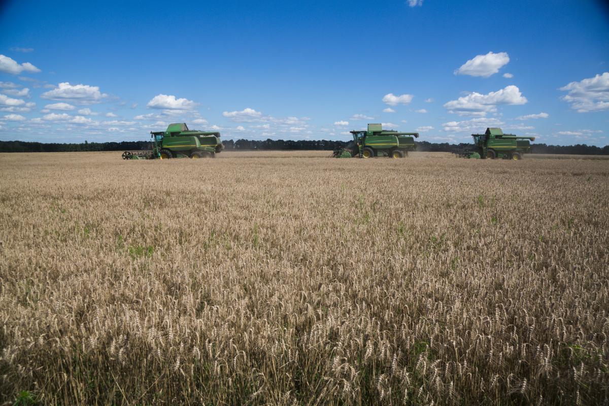 В условиях постоянной турбулентности аграрии нуждаются в помощи государства / фото УНИАН