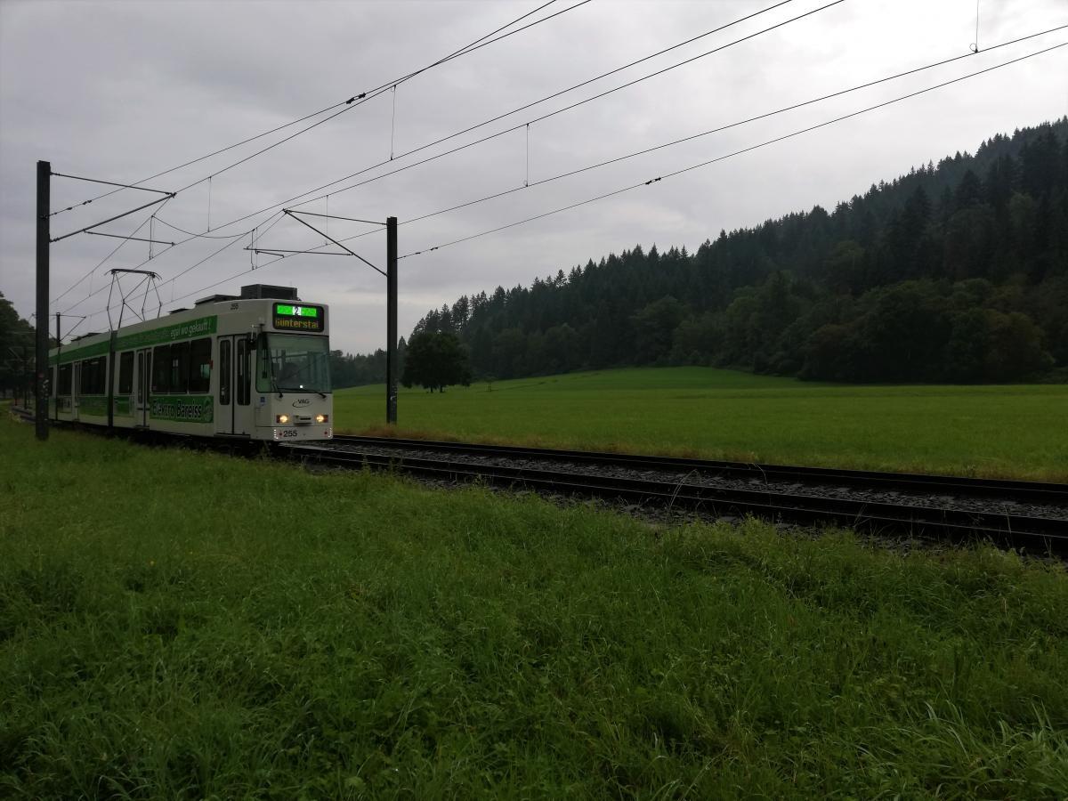 Трамвай від Фрайбурга до Дорфштрассе / Фото Марина Григоренко
