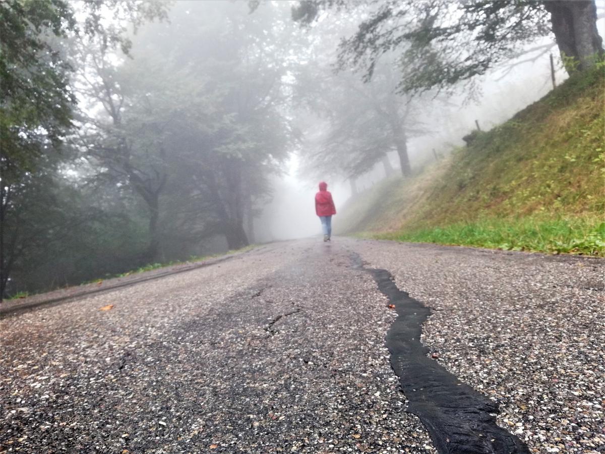 В туман в Шварцвальді особлива атмосфера / Фото Марина Григоренко
