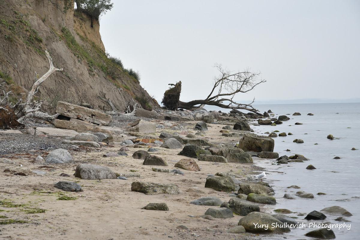 Балтійське море «відрізає» кусками землю / фото Yury Shulhevich