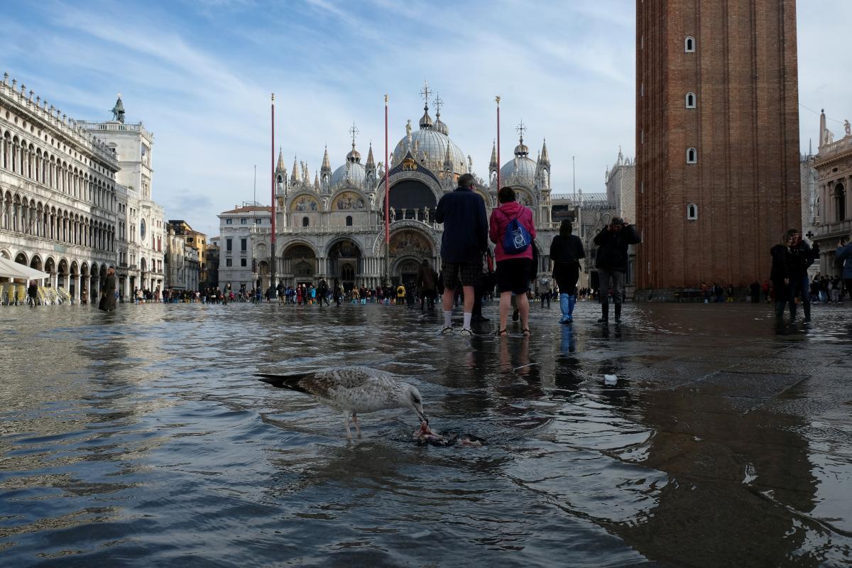 венеция есть вода фото на сегодня действительно был криминальным