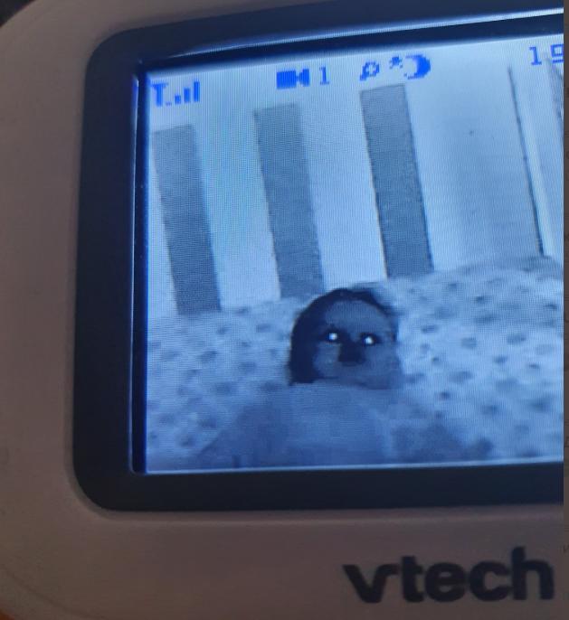 Демонический вид младенца на кадрах с видеоняни / twitter.com/PassionPopSoc