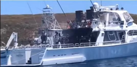 KISS сыграли для белых акул / скриншот видео ТСН