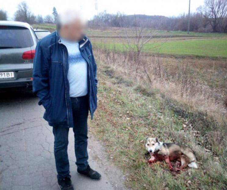 На Хмельнитчине полиция расследует обстоятельства жестокого обращения с собакой / фото facebook.com/policia.Khmelnytskoi.oblasti/