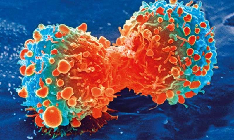 Хроническое воспаление способно вызвать рак / medicalxpress