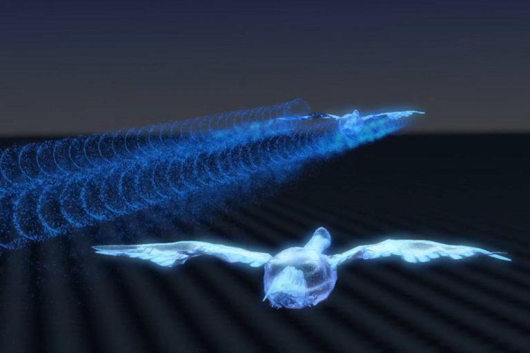 Перелетные гуси могут улучшить экономичность дальнемагистральных самолетов / фото Airbus