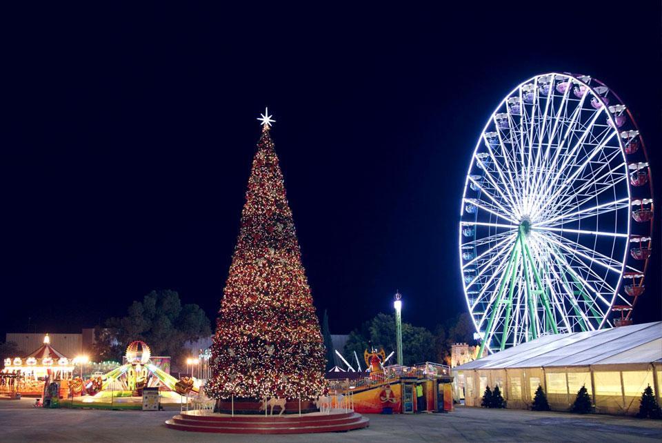 Рождество на Кипре обычно без снега, но с пальмами и зеленью / Фото chooseyourcyprus.com