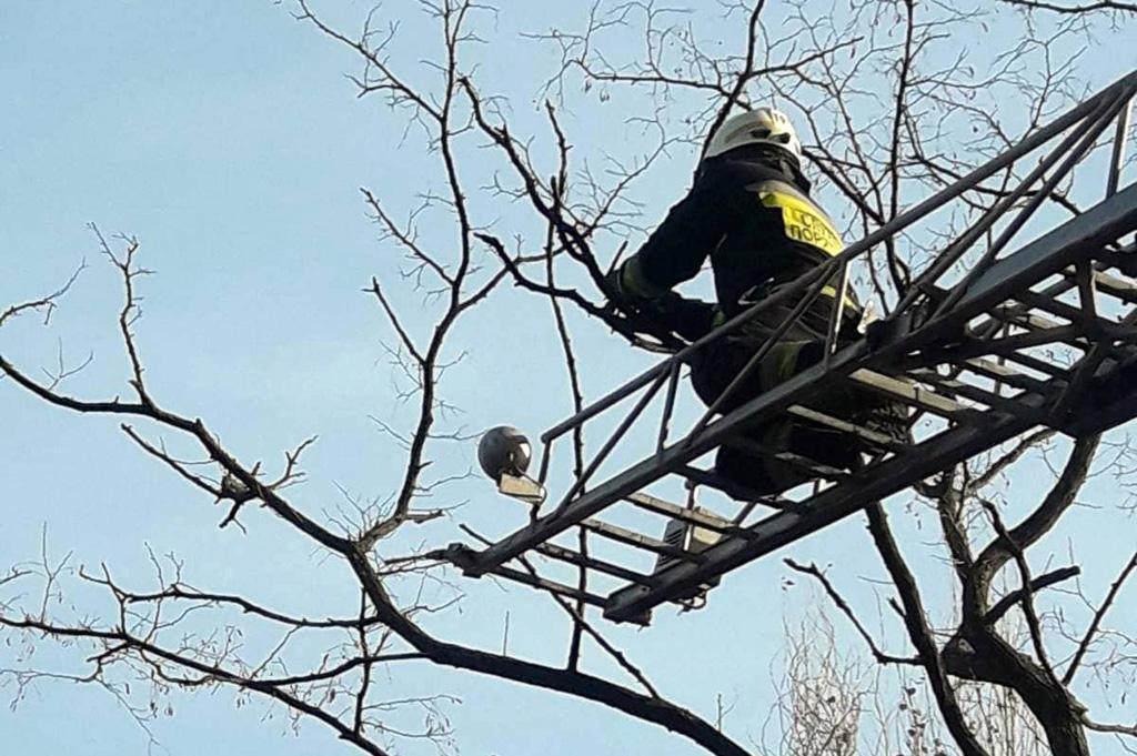 Спасатели применили автолестницу / фото: ГУ ГСЧС Днепропетровской области