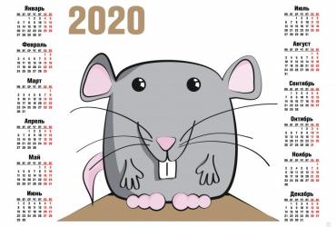 Астрологи рассказали, каким будет 2020 год для разных знаков Зодиака