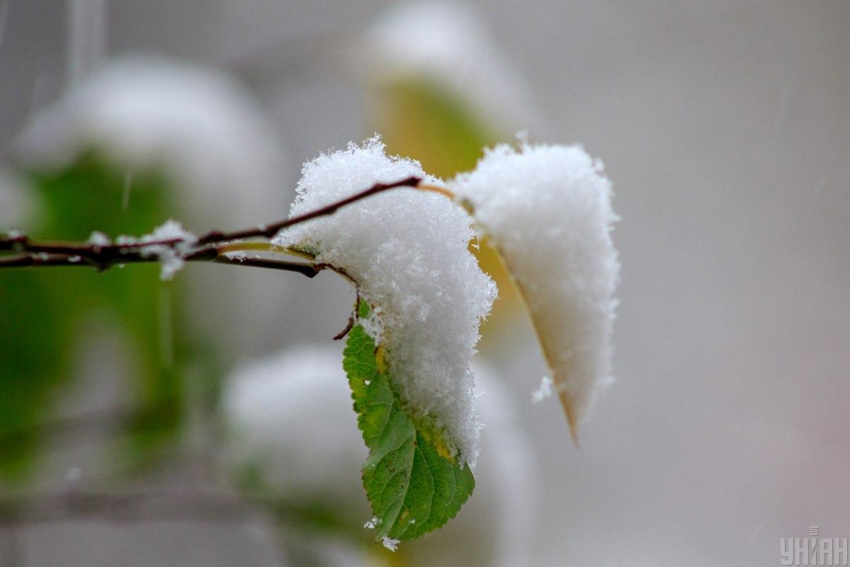 Наші предки вірили, що за погодоюна Введення можна було передбачити, якою буде майбутня зима / УНІАН