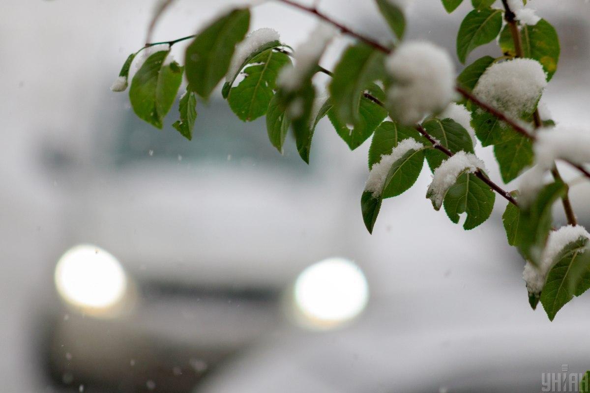 Еколог розповіла про наслідки зими без снігу/ УНІАН