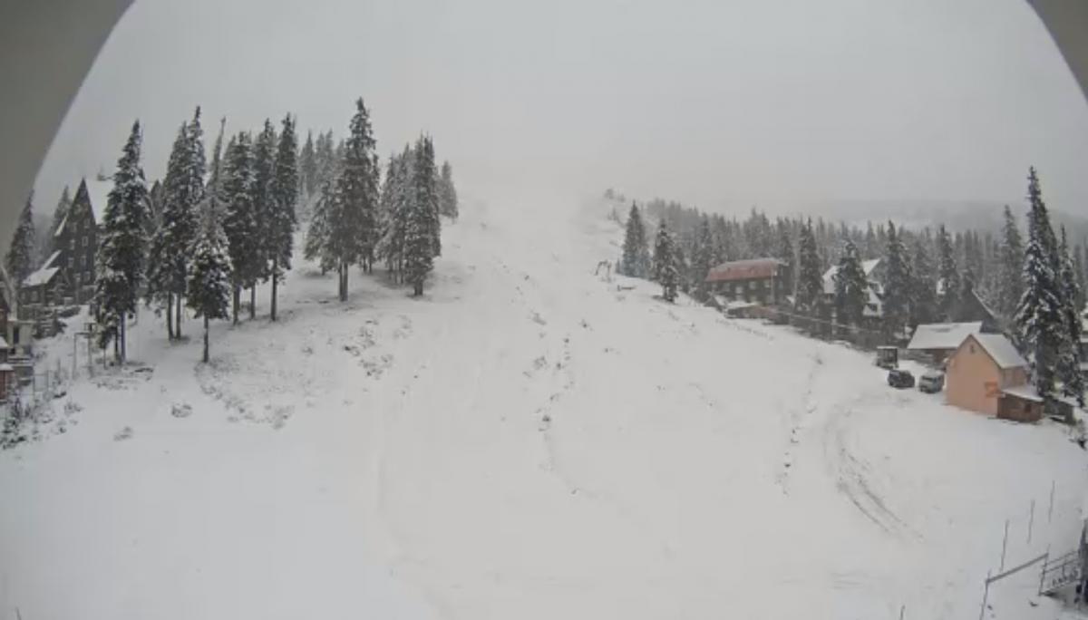 Карпаты заметает снегом / snig.info