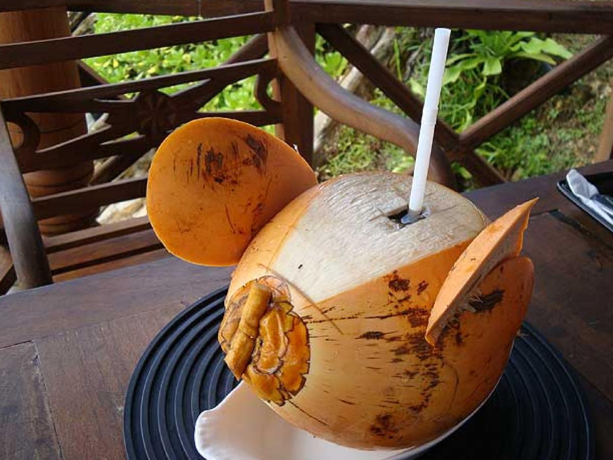 Попить из кокоса на Шри-Ланке нужно обязательно / Фото Вероника Кордон