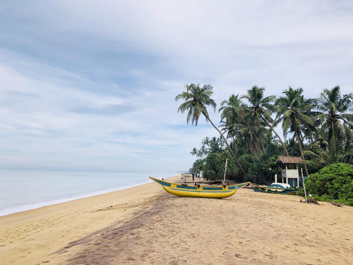 МАУ запускает рейсы на Шри-Ланку/ Фото Вероника Кордон