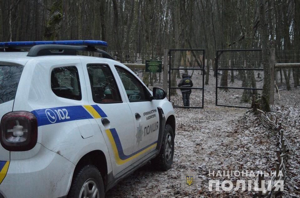 Тварини були напівручними, вони не боялися людей / фото ГУ НП в Волинській області