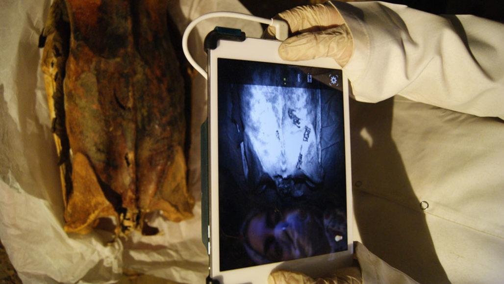 Ученые нашли татуировки у древних мумий / Science News - A. AUSTIN