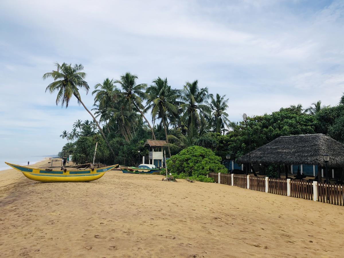 Колоритная Шри-Ланка / Фото Вероника Кордон
