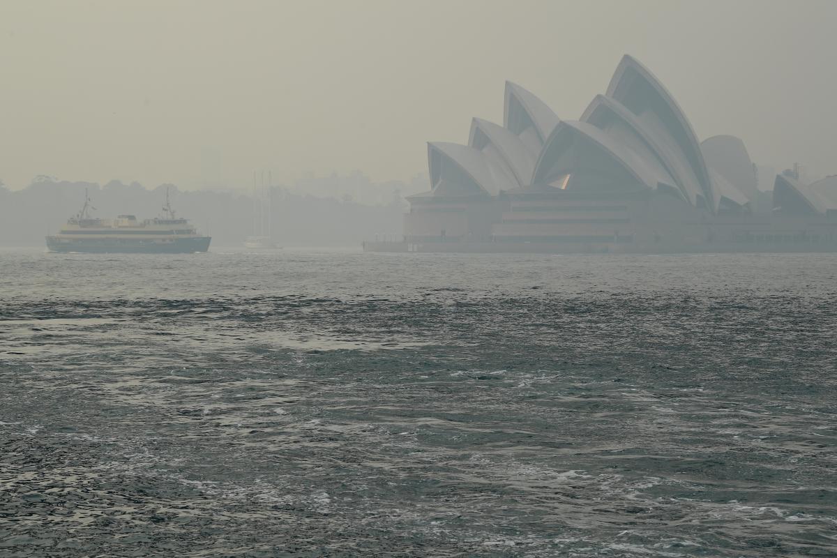 Лісові пожежі в Австралії / REUTERS