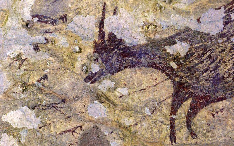 Наскельниймалюнокполювання на буйвола / фото Ratno Sardi / nature.com