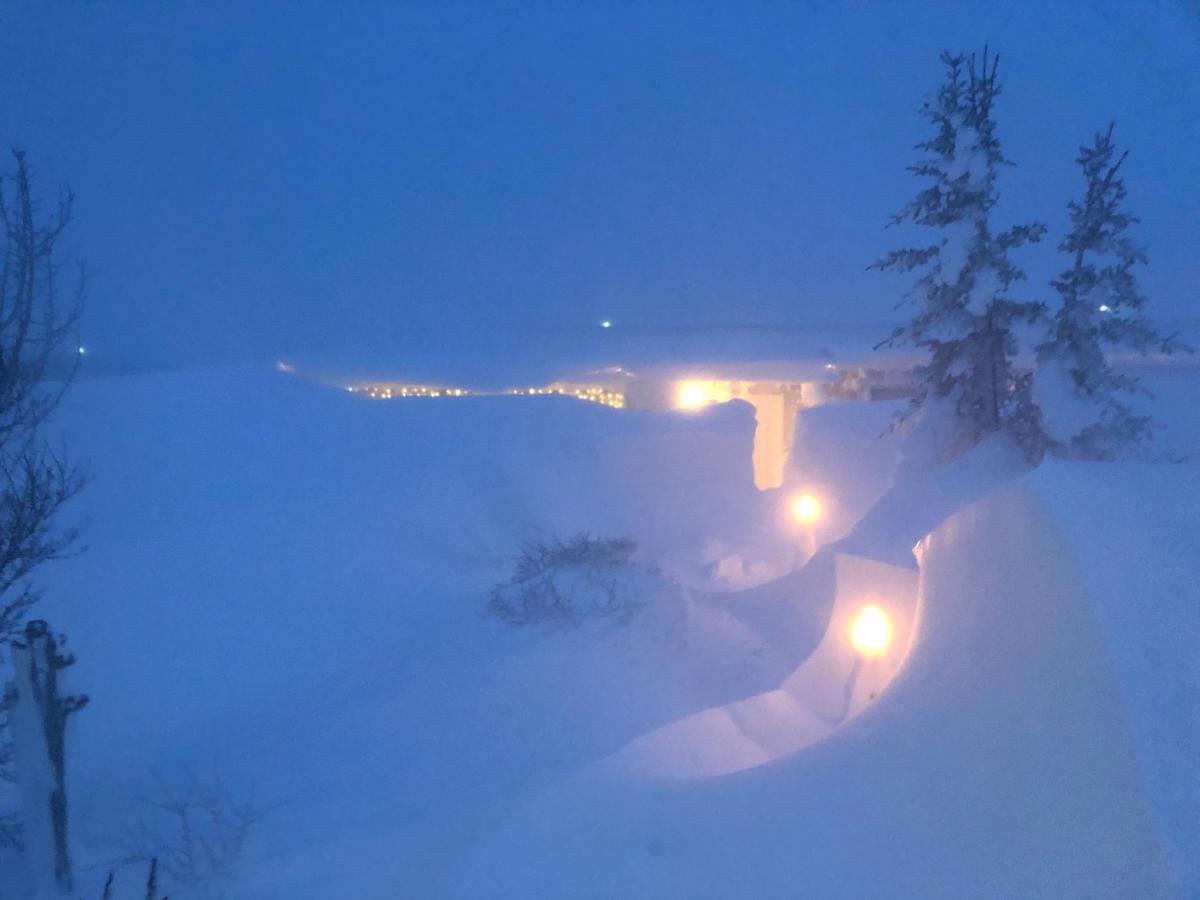 Север Исландии замело снегом / www.facebook.com/ruvnordurland