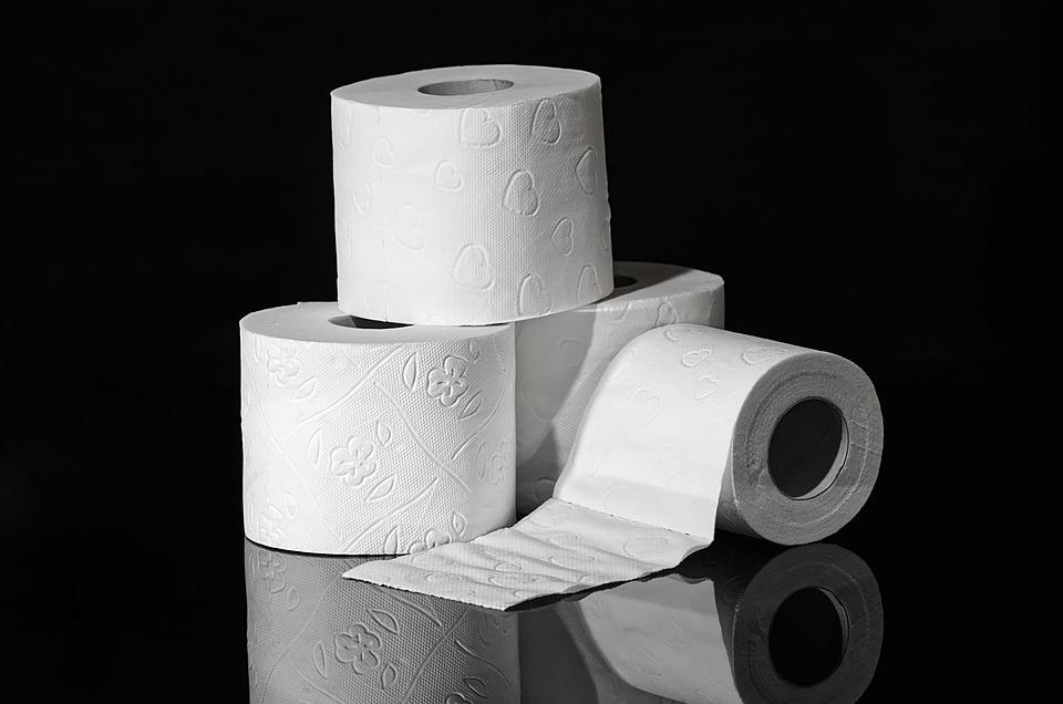 Науковці з'ясували, чому люди по всьому світу скуповують туалетний папір / фото pixabay.com