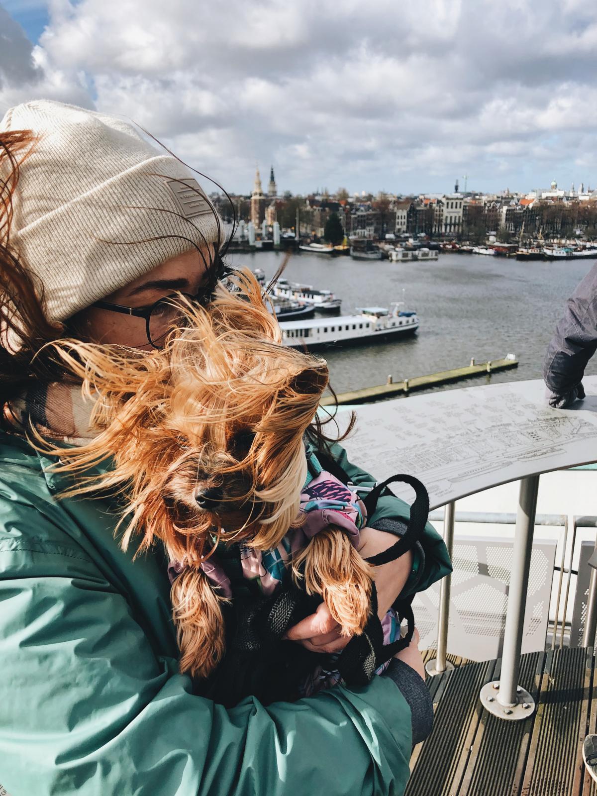 Путешествие с собакой – это отдых под другим углом / Фото Елена Браун